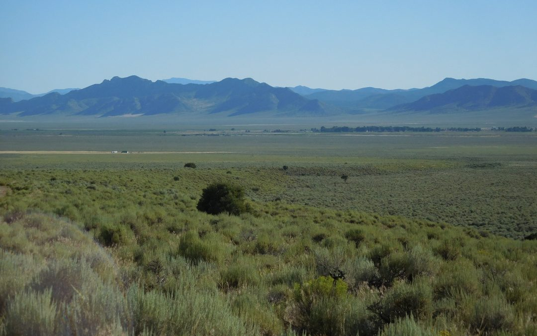 880 Acres in Water Canyon, White River Valley, NV 89301