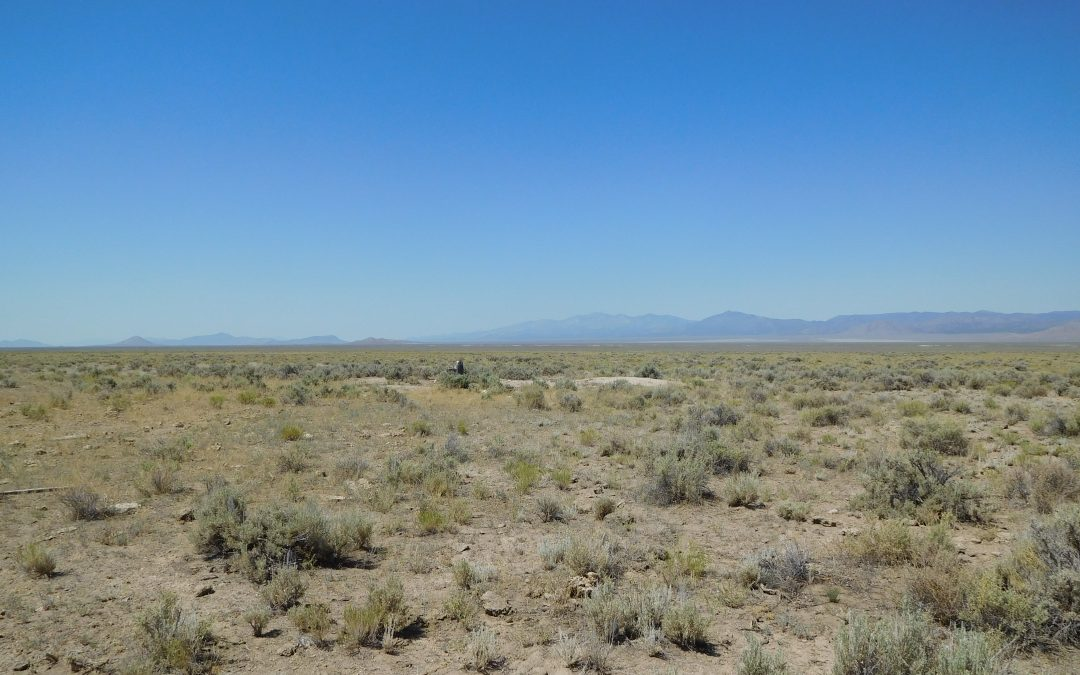314 Acres South of Lund, Nye County, NV