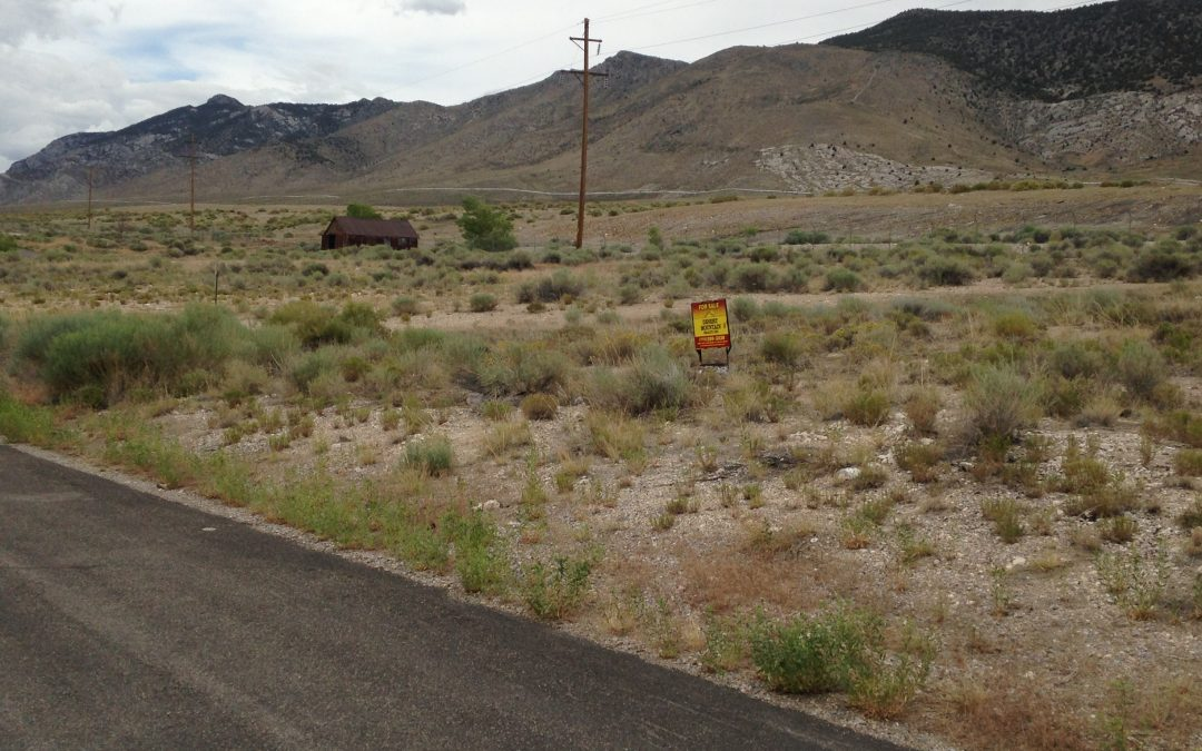 1/2 Acre on N. 2nd Street, McGill, NV 89318